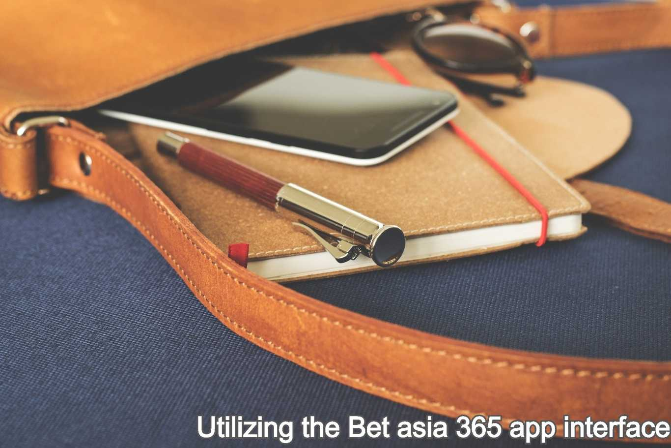 Utilizing the Bet asia 365 app interface