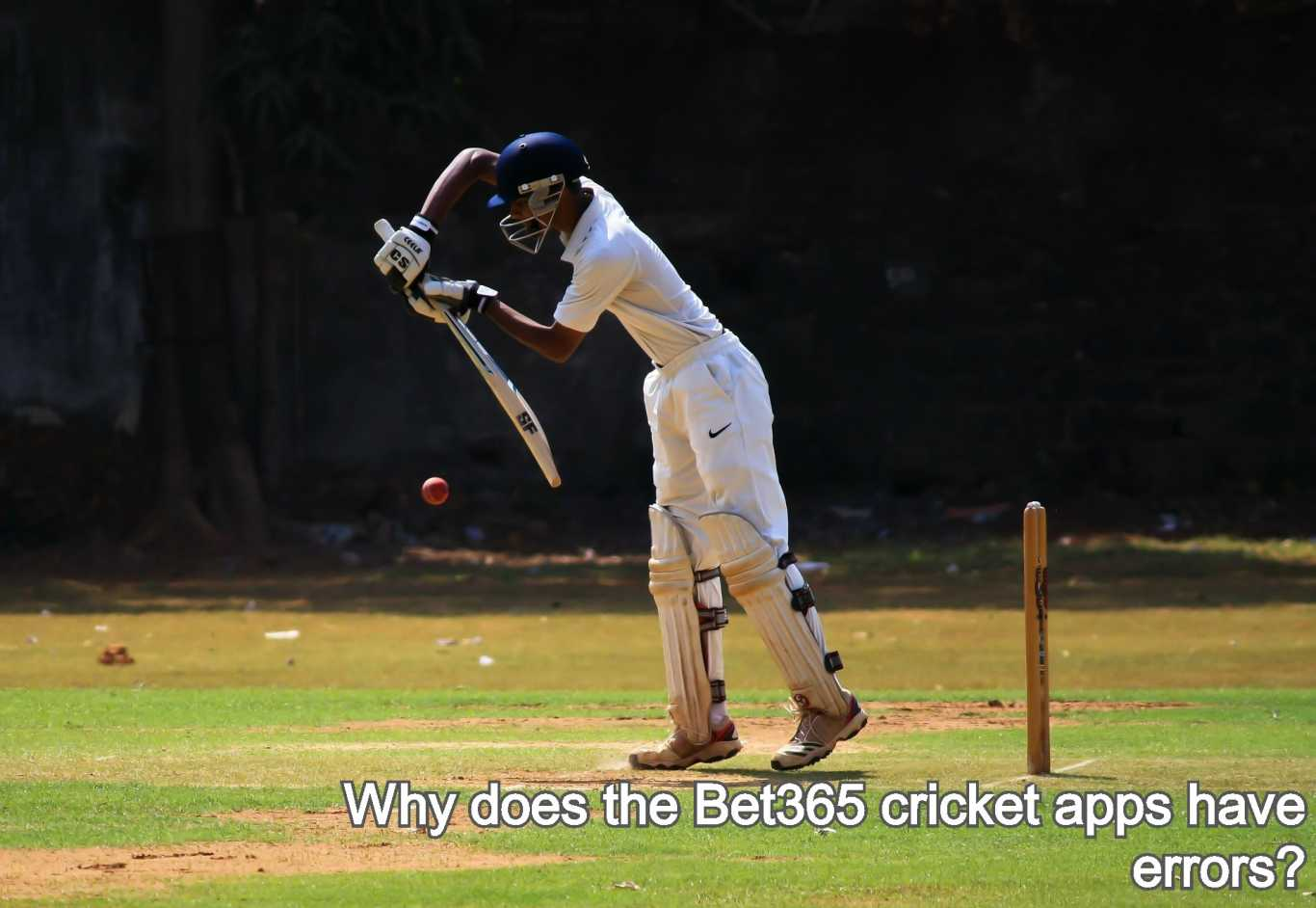 Why does the Bet365 cricket apps have errors?